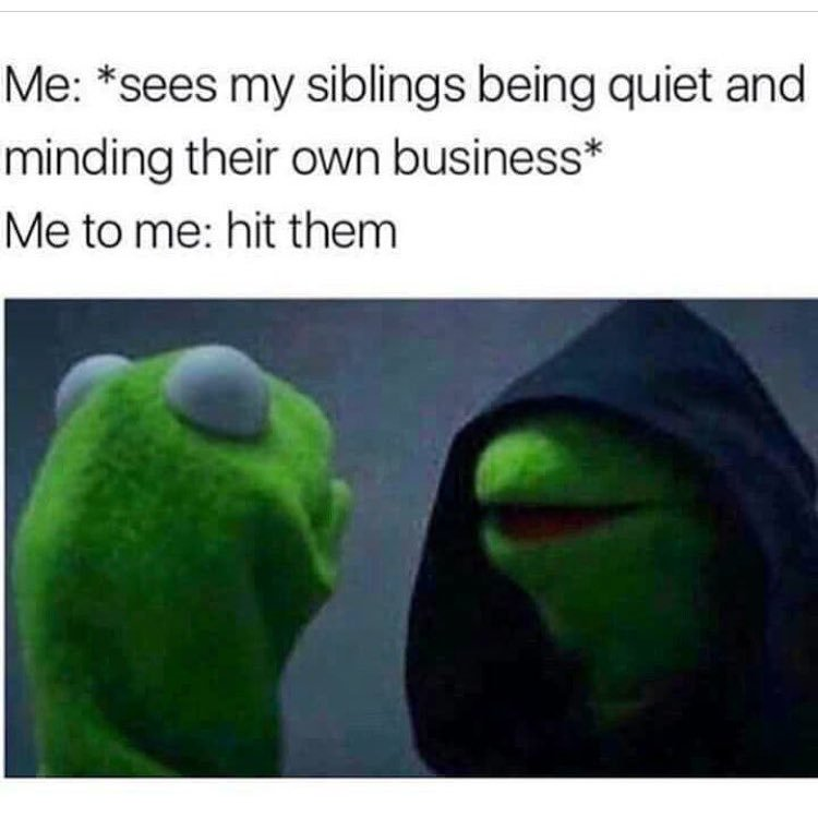 50 memes you'll only relate to if you have siblings.